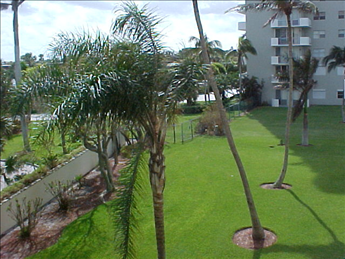 180 Seview Ct  Tradewinds 304, MARCO ISLAND Unit: 304