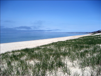 Beach View toward Provincetown