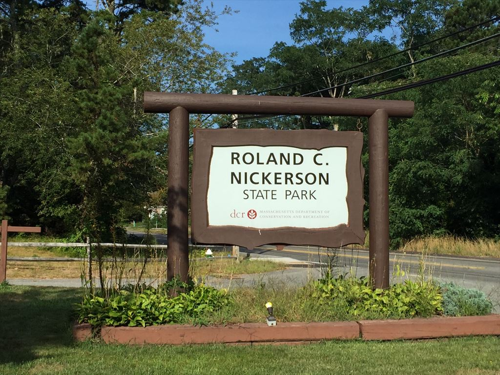 Nickerson State Park Is So Close for Freshwater Ponds, Biking, Hiking