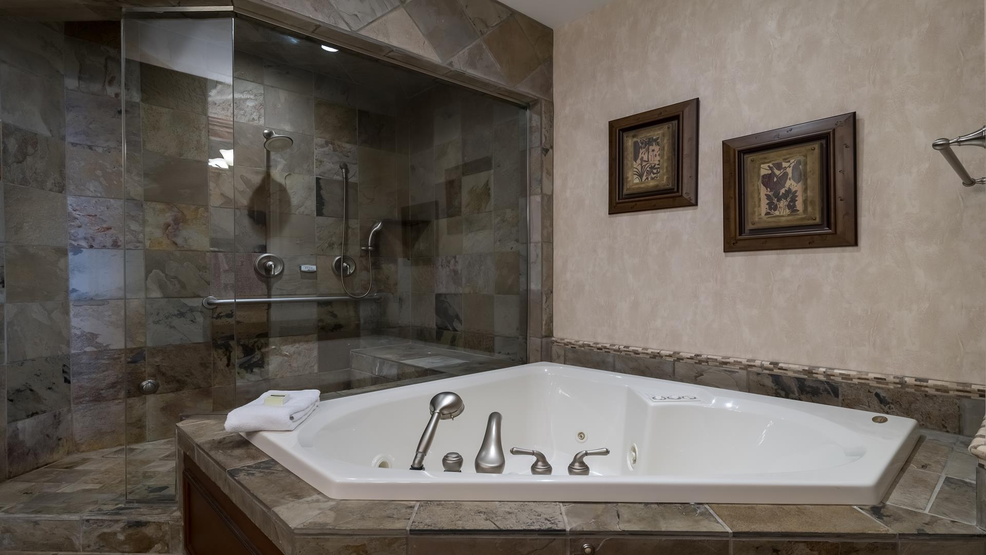 Large soaking tub and walk-in shower